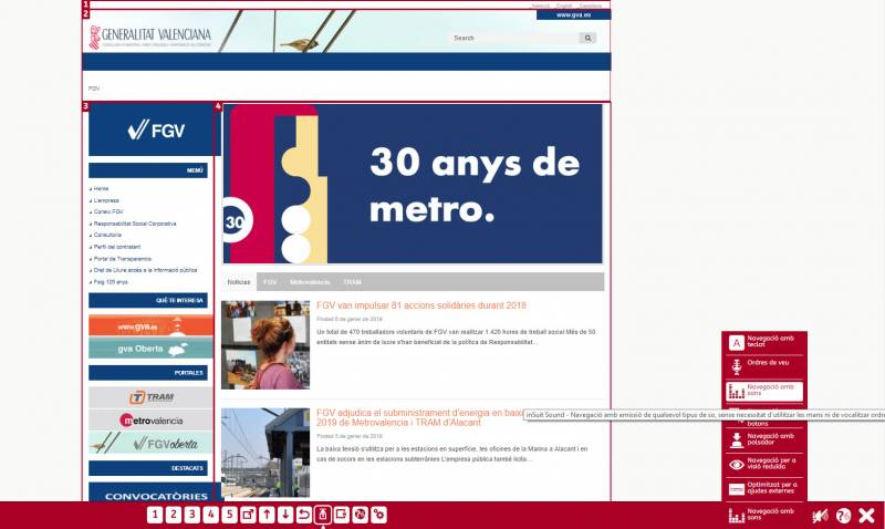 Web FGV accesible