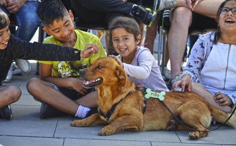 14 desfile solidario AUPA - BIOPARC para fomentar las adopciones de perros abandonados