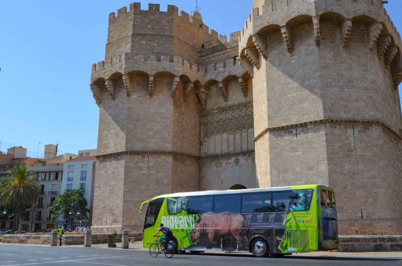 Autobús BIOPARC Valencia - autobús tematizado