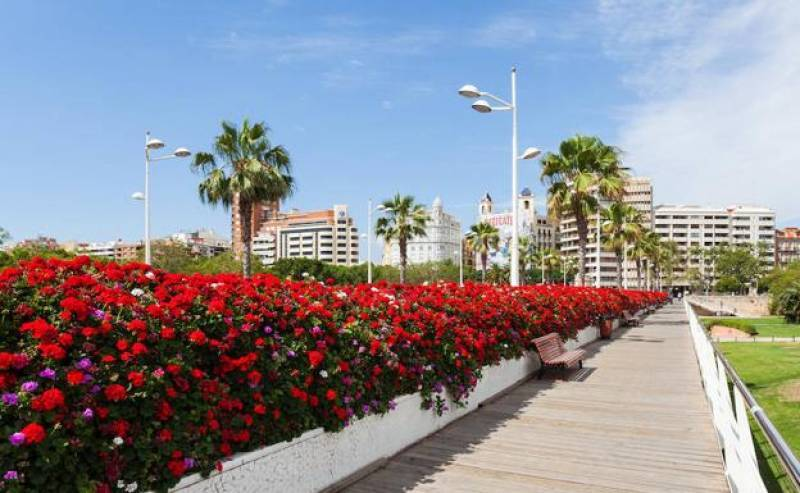 10 cosas que no sabías sobre el Puente de las Flores