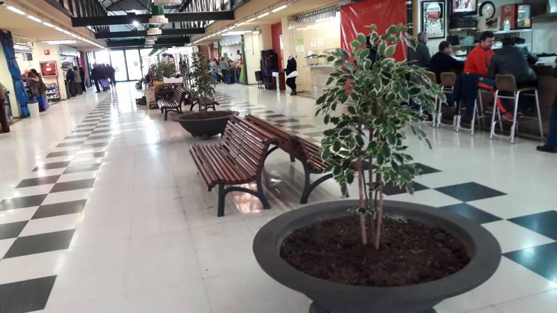 Nuevas plantas en el Mercat de Castella