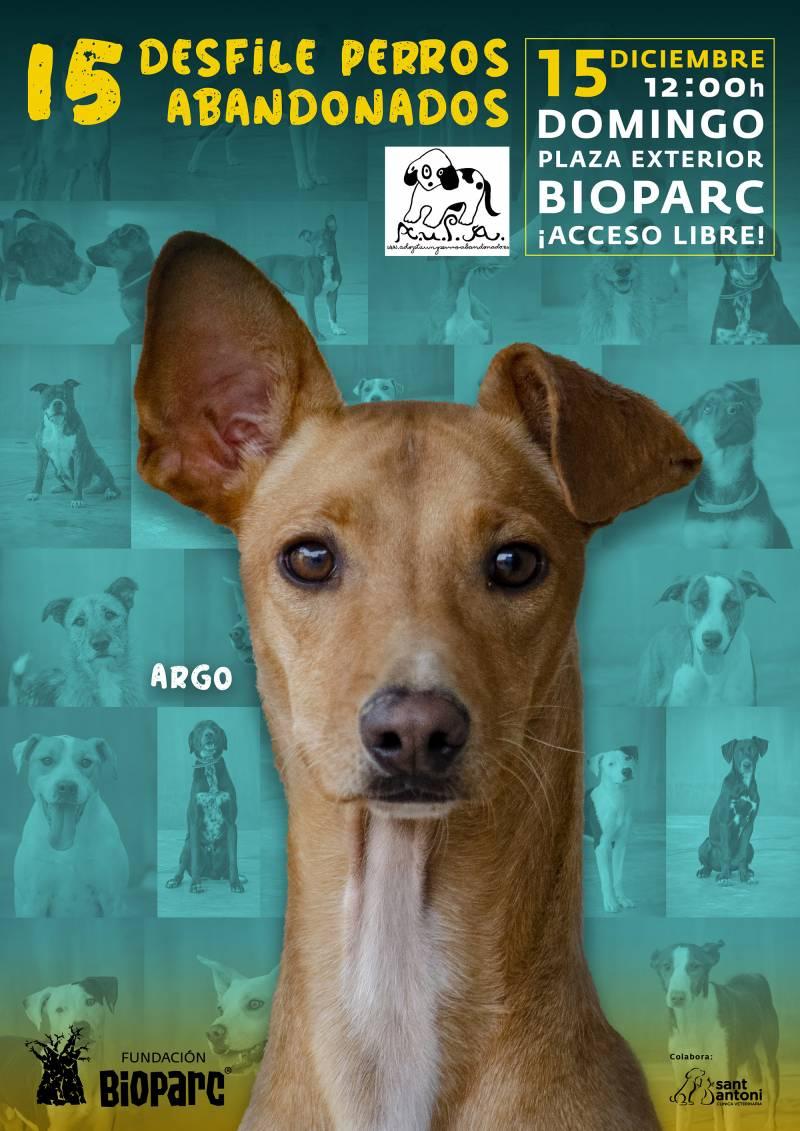 Este domingo 15 Carolina Ferré presentará el 15º Desfile de A.U.P.A y Fundación BIOPARC para adoptar perros abandonados