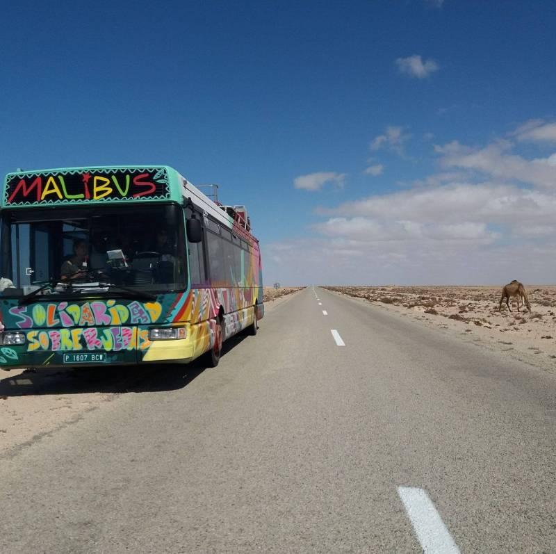 Donación autobuses EMT