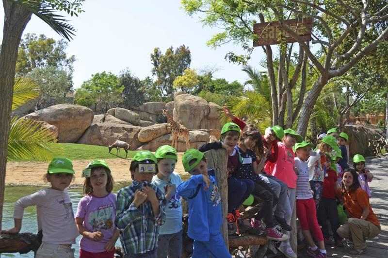 Expedición África - BIOPARC Valencia - escuela de vacaciones - expertos en jirafas