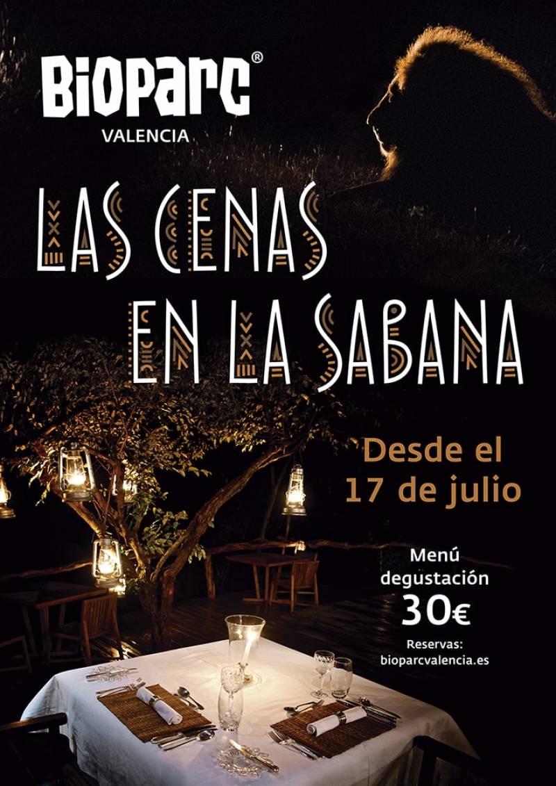 Cartel cenas en la sabana, Bioparc./ EPDA