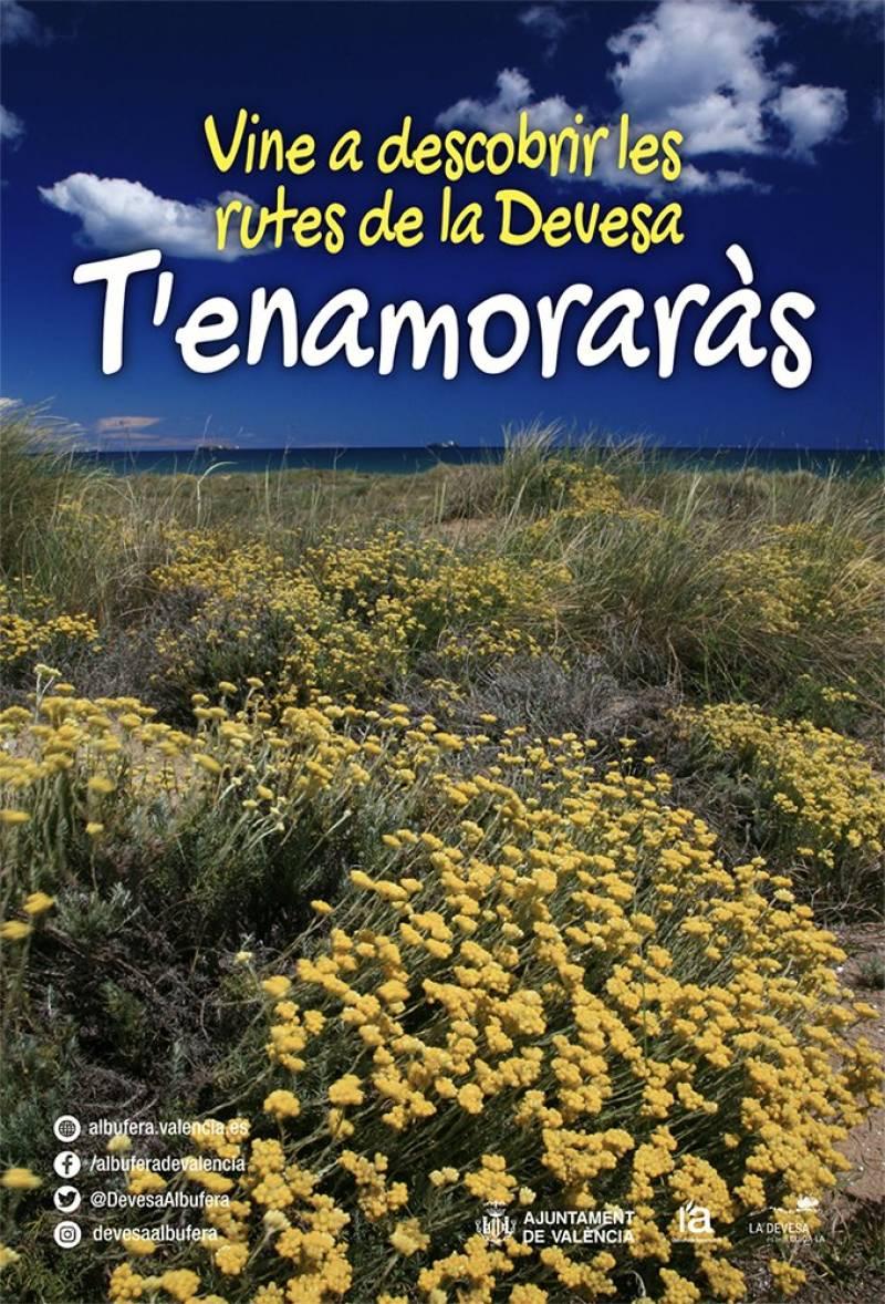 Itinerarios Devesa-Albufera