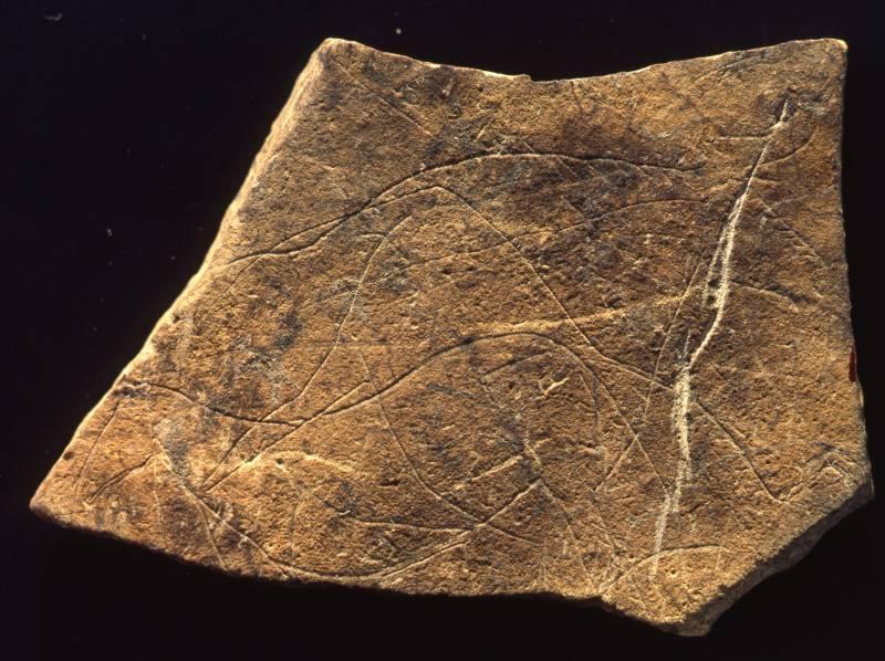 Una de las piezas cedidas por el Museu de Prehistòria
