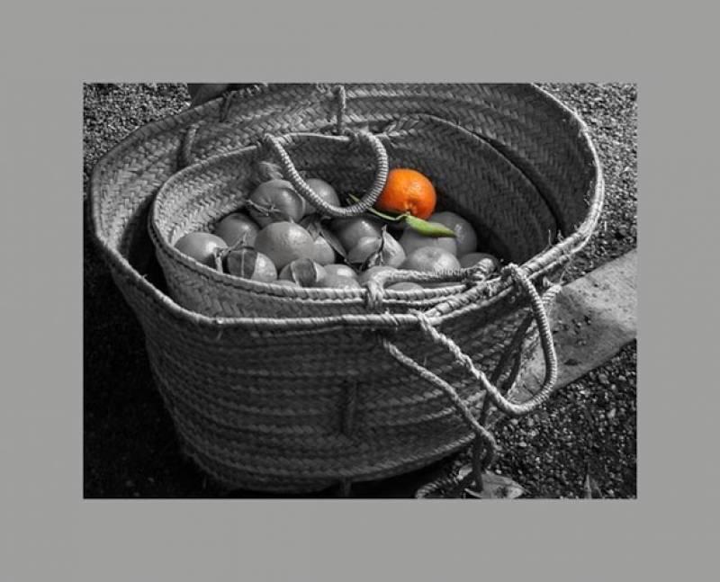 Canasta con naranjas