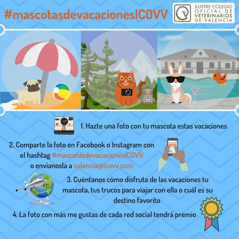 Campaña verano ICOVV