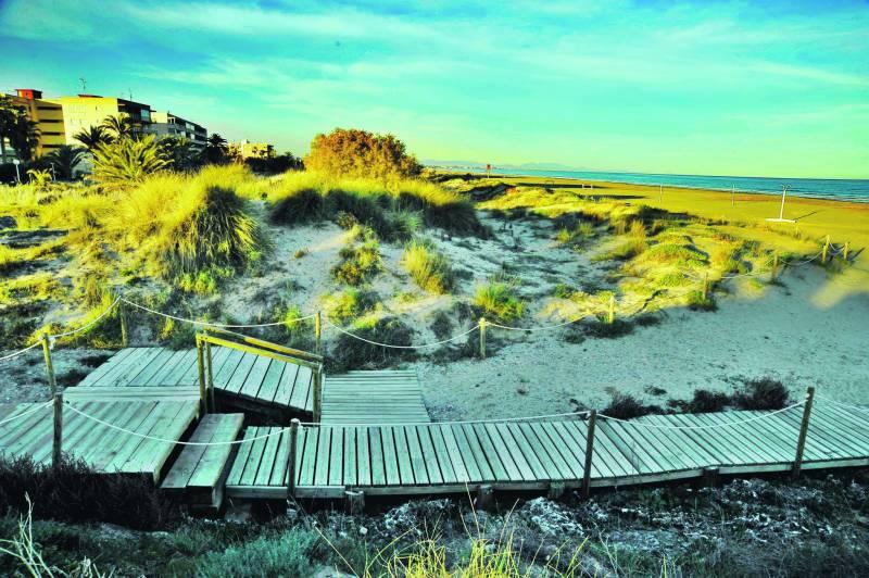 Playa de Canet con sus dunas carácterísticas.