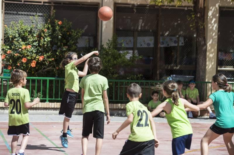 Escuelas de baloncesto