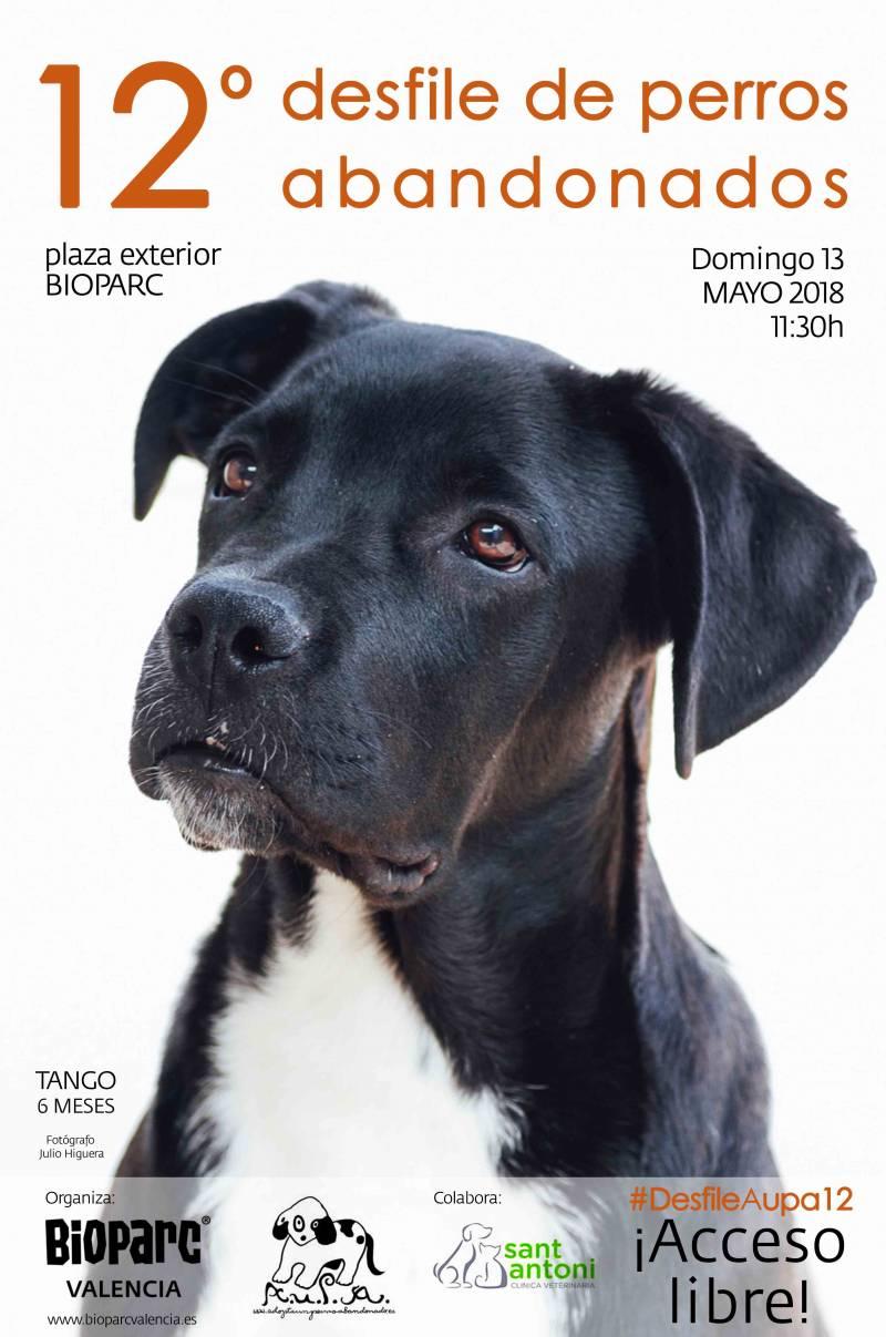Cartel AUPA - 12º desfile perros - BIOPARC mayo 2018