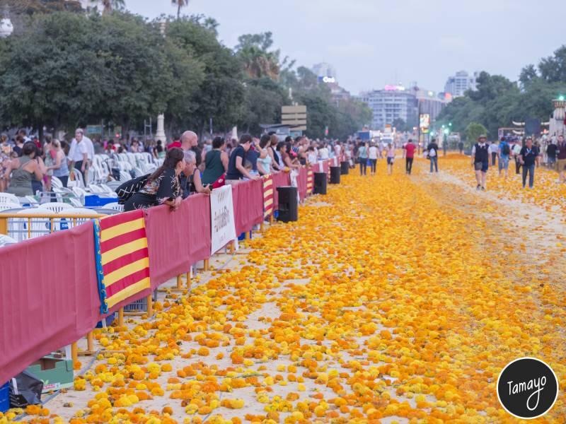 Batalla de Flores // Tamayo