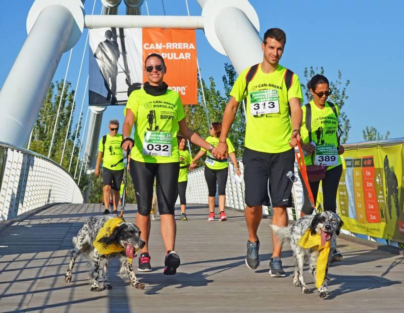 CAN-RRERA de BIOPARC Valencia - carrera solidaria en la que se participa con perro para celebrar el Día Mundial del Animal