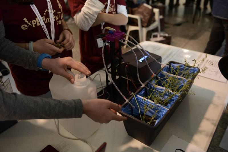 La Ciutat de les Arts i les Ciències acoge la XIII Feria-Concurso 'Experimenta', organizada por la Universitat de València