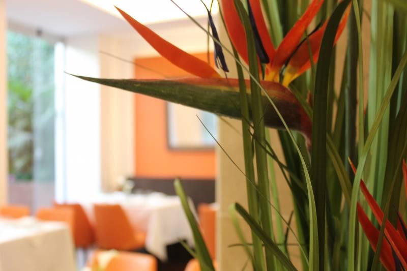 La elegancia y el exotismo rodean la sala del restaurante//E.C.
