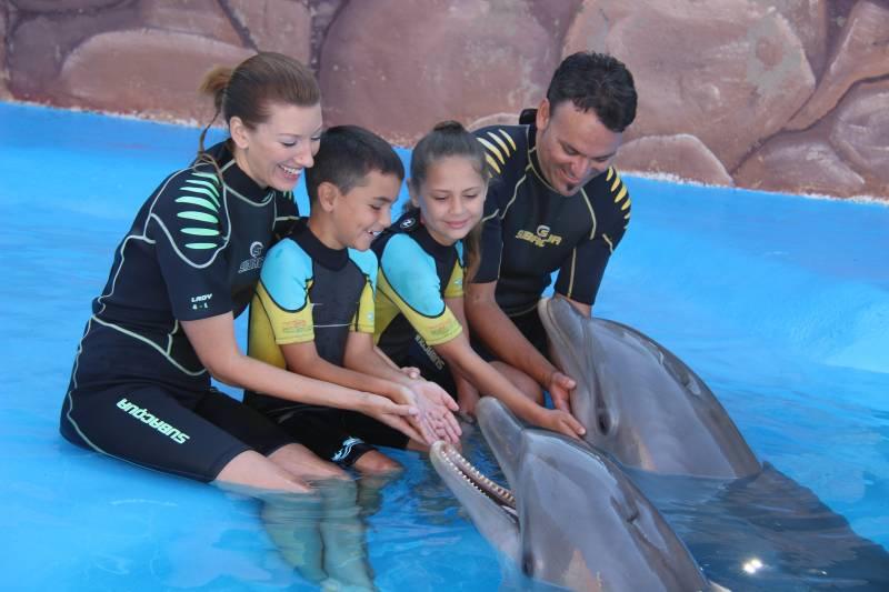 Encuentro delfines