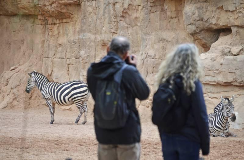 Abril 2017 - Un Viaje a la Sabana Africana - Bioparc Valencia