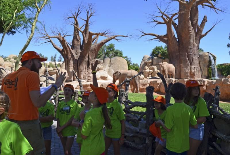 Expedición África - Escuela de vacaciones BIOPARC Valencia