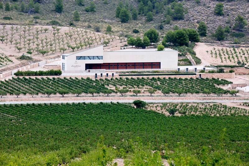 Bodegas MGWines Sierra Salinas en Alicante.