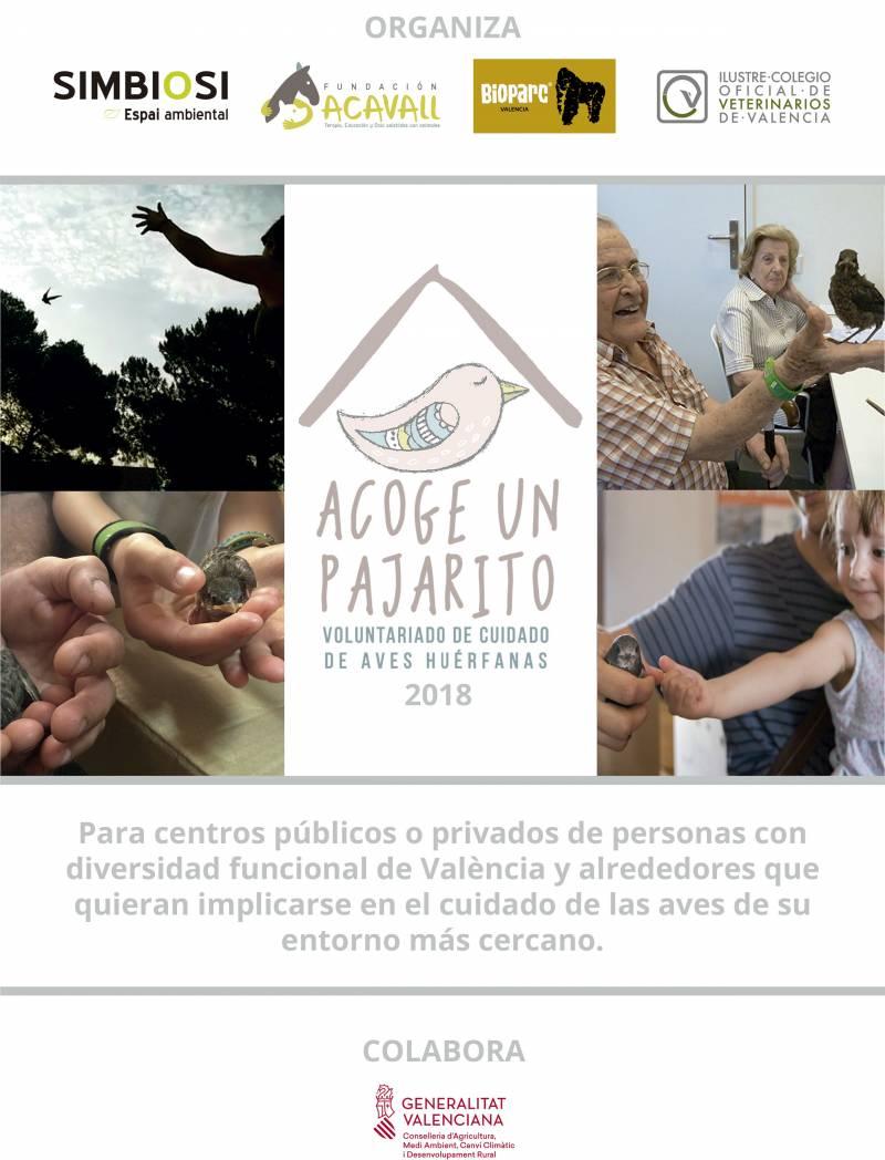 Cartel Acoge Un Pajarito 2018