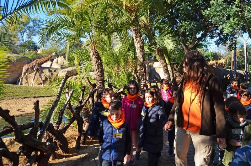 Expedición África Navidad - BIOPARC Valencia - expertos en jirafas