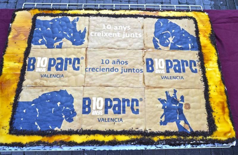 10º ANIVERSARIO BIOPARC VALENCIA - tarta