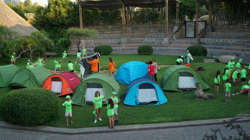 Expedición África Verano noche en BIOPARC