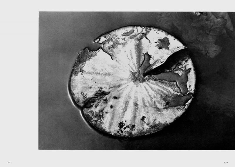 Joukyou 1965 (Conditions 1965), de la publicació oficial de l?Associació Japonesa d?Estudiants de Fotografia, any 1966