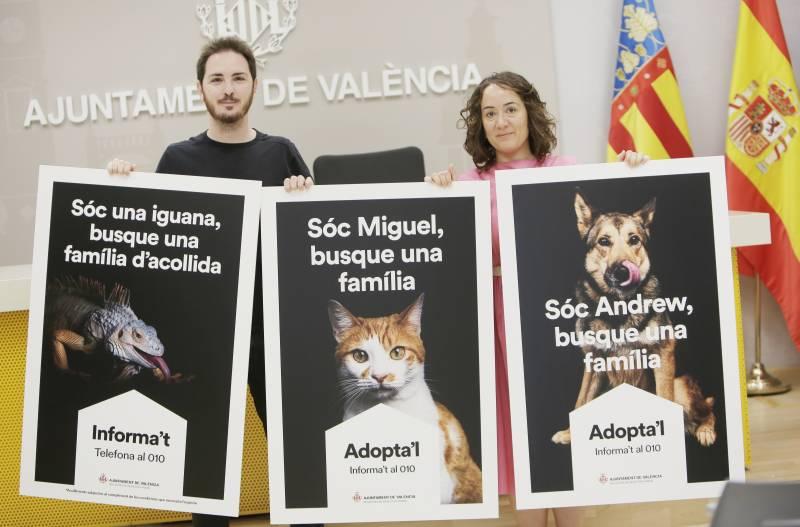 Campaña Adopta