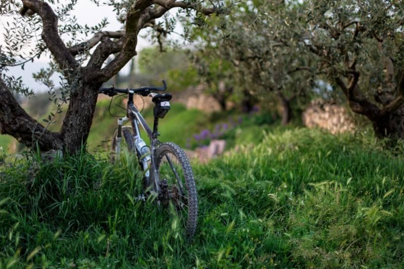 Turismo cicloturista