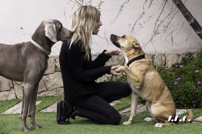 Linda, Max y Eva Balaguer
