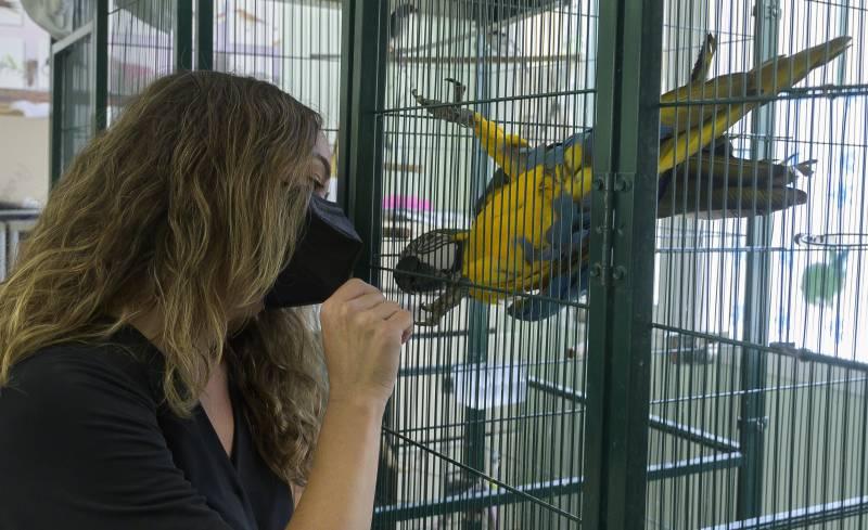 La regidora de Benestar Animal, Glòria Tello al centre de fauna exòtica de Natzaret. EPDA