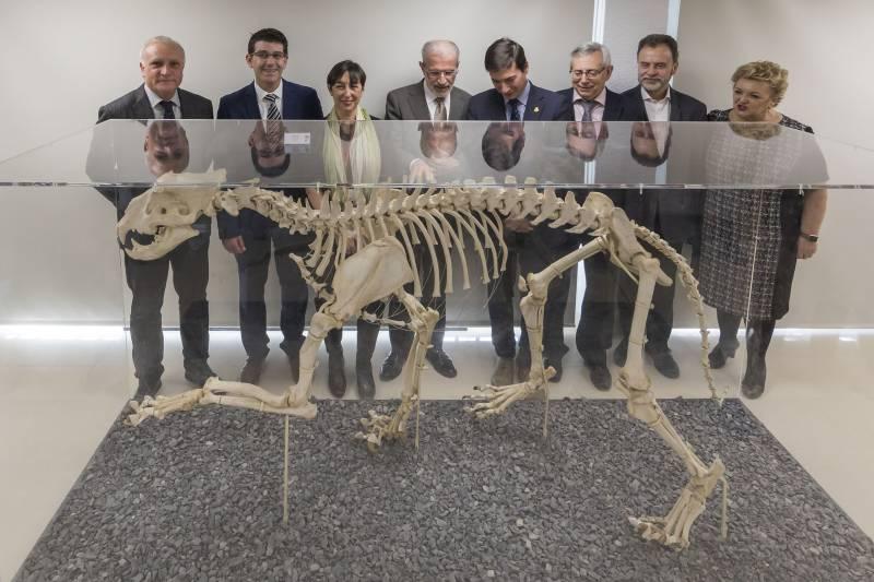 Inauguración Museu d